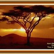 Tree At Sunset. L A With Decorative Ornate Printed Frame. Poster