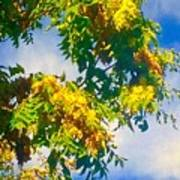Tree Branch With Leaves In Blue Sky Poster