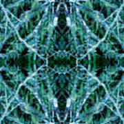 Tree Moss Mandala Poster