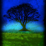 Tree Of Life - Blue Skies Poster by Robert R Splashy Art
