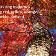Tree On Fire - Haiku Poster