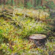 Tree Stump In Vikersund Poster