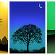Tree Triptych Poster