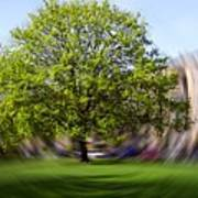 Tree With Animated Surroundings Poster