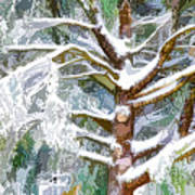Tree With White Fluffy Snow Poster