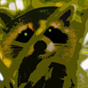 Treed Raccoon Poster