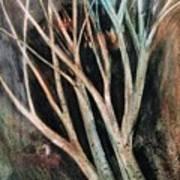 Trees That Tumble Poster