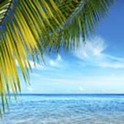 Tropical Beach Poster by Carlos Caetano