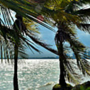 Tropical Breeze Poster