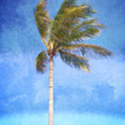 Tropical Palm Tree Poster