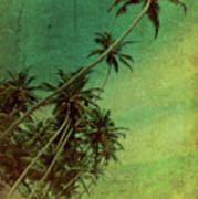Tropical Vestige Poster by Andrew Paranavitana