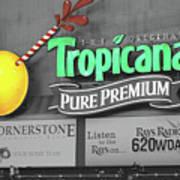 Tropicana Field Poster