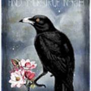 True North Crow And Magnolias Poster
