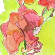 Trumpet Vine Blossom Poster