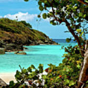 Trunk Bay Island  Poster
