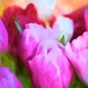 Tulip 58 Poster