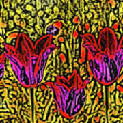 Tulips Are Tulips Poster