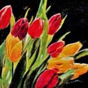 Tulips Colors Poster