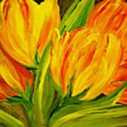 Tulips Parrot Yellow Orange Poster