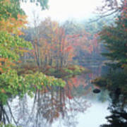 Tully River Autumn Poster