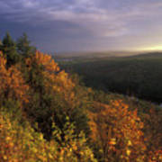 Tully River Valley Autumn Poster