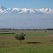 Turkey Landscape Poster