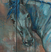 Turquoise Horse Poster