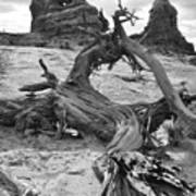 Turret Arch - Bw Poster