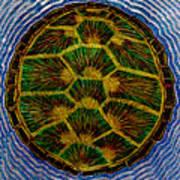 Turtle Shell Mandala Sparkle Poster