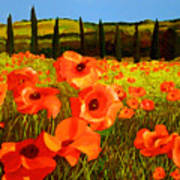 Tuscan Poppies Poster by JoeRay Kelley