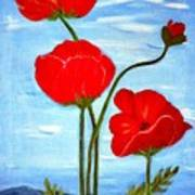 Tuscan Poppies Poster