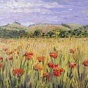 Tuscany Poppies Poster by Nadine Rippelmeyer