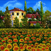 Tuscany Sunflowers Field Poster