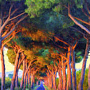 Tuscany Tree Tunnel Poster
