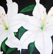 Twin White Lillies Poster