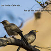 Two Birds Poster by Atul Daimari
