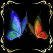 Two Butterflys -4 Poster