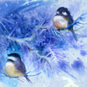 Two Chickadees In Snow Poster