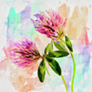 Two Clover Flowers With Pastel Shades. Poster
