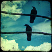 Two Crows Blue Lomo Sky Poster