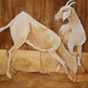Two Goats In Sepia Poster