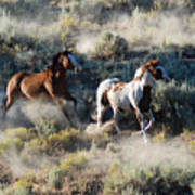 Two Horses Running Poster