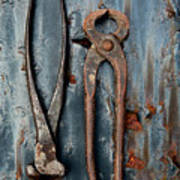 Two Old Rusty Pliers Poster