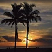 Two Palms At Dawn 18222 Poster