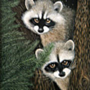 Two Raccoons Poster