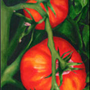 Two Red Tomatoes Poster by Pepe Romero