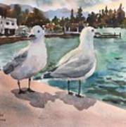 Two Seagulls By The Sea Poster