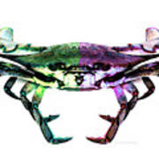 Two Sides - Duality Crab Art Poster