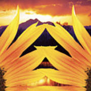 Two Sunflower Sunset Poster
