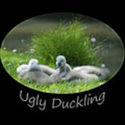Ugly Duckling Poster
